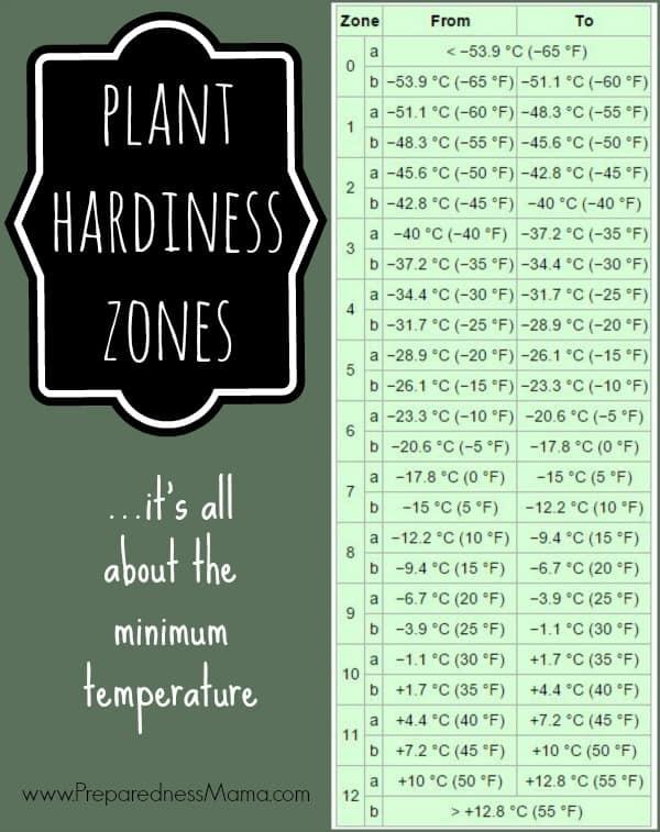 Plant Hardiness Zones | PreparednessMama
