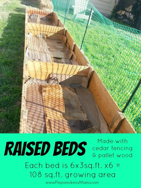 Create raised beds from cedar fencing and pallet boards for around $12 | PreparednessMama
