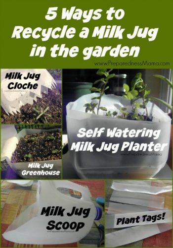5 Ways to recycle a milk jug in the garden | PreparednessMama