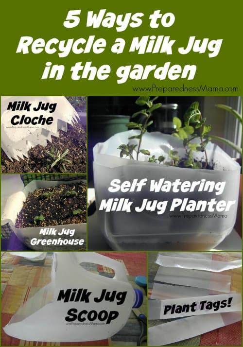 5 Ways To Recycle A Milk Jug In The Garden Preparednessmama