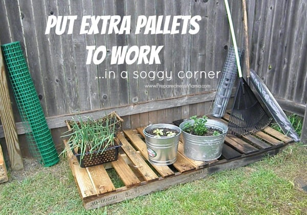 Reclaiming a soggy corner with extra pallets | PreparednessMama