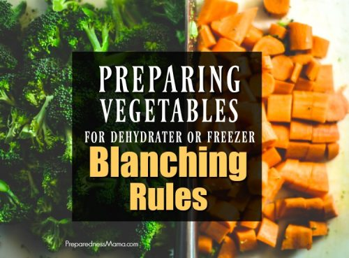 You may love to stock your freezer with the garden harvest, but hate to blanch vegetables ahead of time. Is it an extra step you can skip? Maybe, if you follow the rules | PreparednessMama