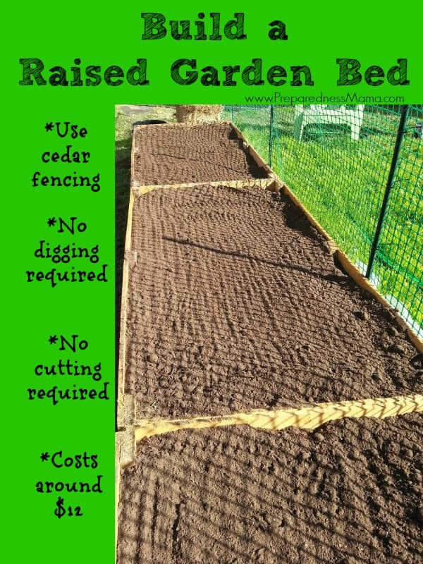 Build a raised garden bed for around $12 | PreparednessMama