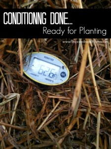 Once the temperature returns to a normal level it's time to plant | PreparednessMama