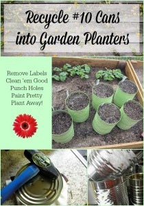 Frugal Garden Tip #6 - Recycle #10 Cans into garden planters | PreparednessMama.com