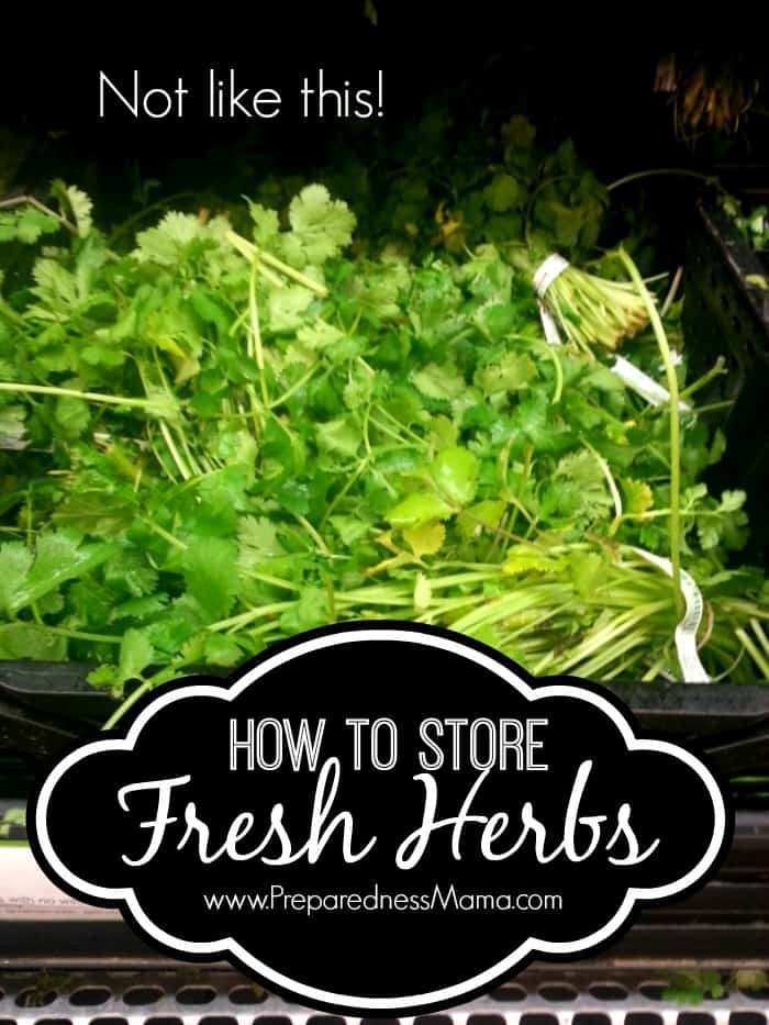 Purchase herbs from the grocer and make them last as long as possible. How to Sotre fresh herbs   PreparednessMama