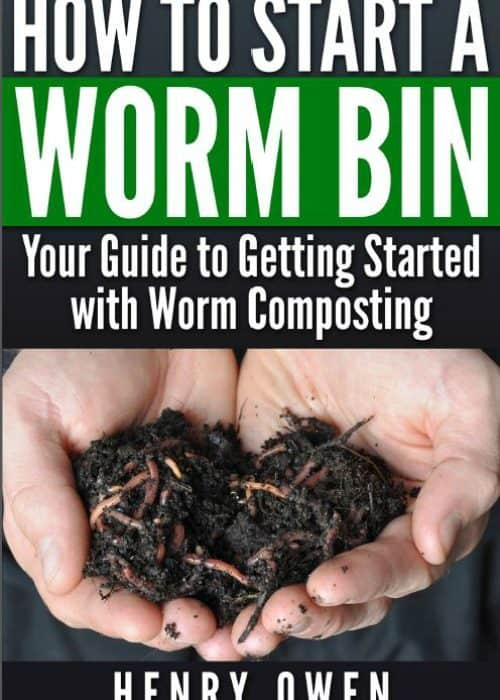 5 Things to Avoid When You Start Worm Composting