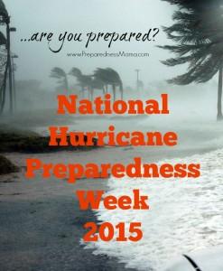 Hurricane preparedness basics   PreparednessMama