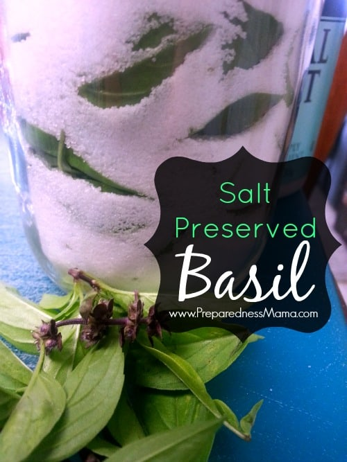 Preserve basil in salt for up to a year. Just layer fresh basil leaves and sea salt in alternating layers in a canning jar. Cap tightly | PreparednessMama