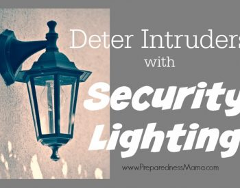 Deter Intruders with Security Lighting | PreparednessMama