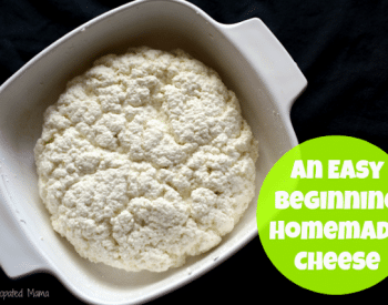 Learn to make simple farmer cheese on Front Porch Friday | PreparednessMama