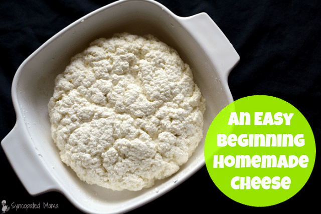 Learn to make simple farmer cheese | PreparednessMama