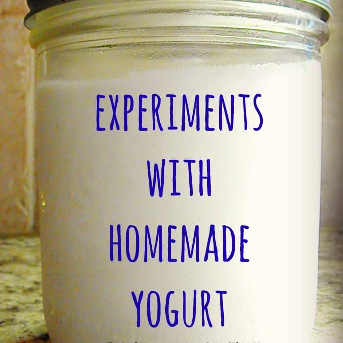 Experiments with Homemade Slow Cooker Yogurt