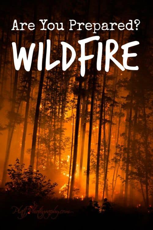 Know The Risk Wildfire Preparedness Before You Need It