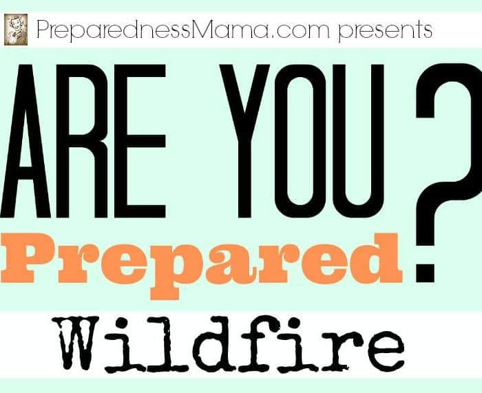 Are You Prepared? Wildfire