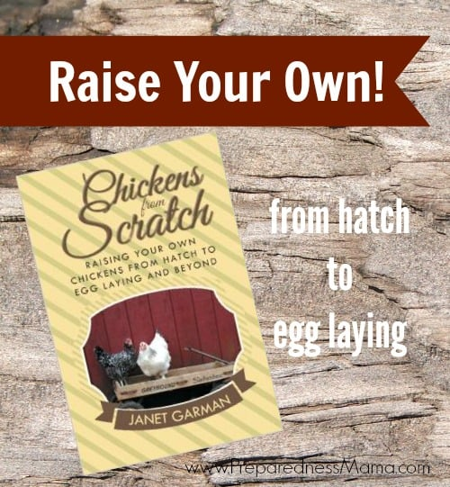 Chickens from Scratch- book review | PreprednessMama