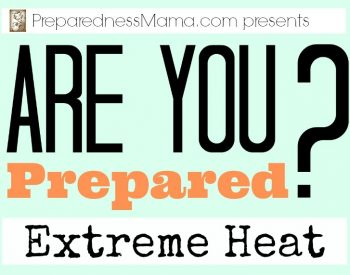 Prepare for extreme heat this summer. These simple steps can keep you cool and safe   PreparednessMama