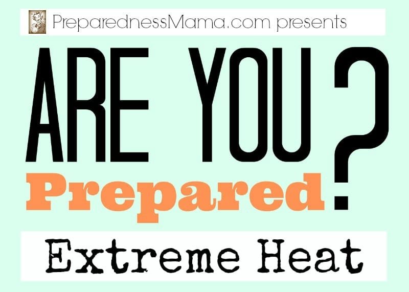 Are you prepared for extreme heat this summer? These simple steps can keep you cool and safe | PreparednessMama