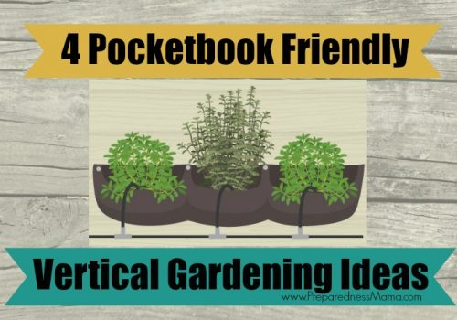 Vertical gardening ideas with Infographic | PreparednessMama