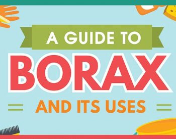 22 Uses for Borax Around the House (infographic) | PreparednessMama