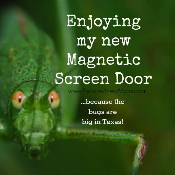 Enjoying my new magnetic screen door...becuase the bugs are big in Texas | PreparednessMama