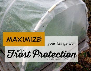 Maximize Your Harvest with Frost Protection