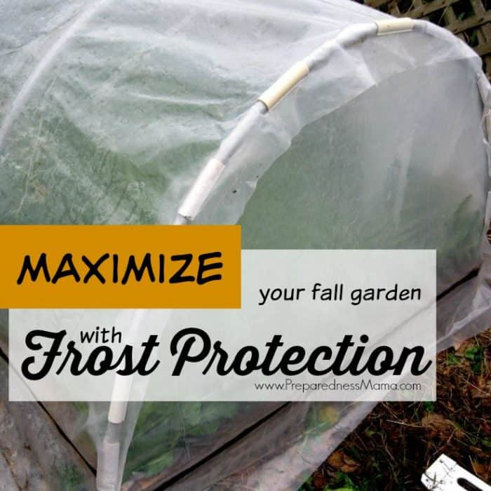 Maximize Your Fall Harvest with Frost Protection