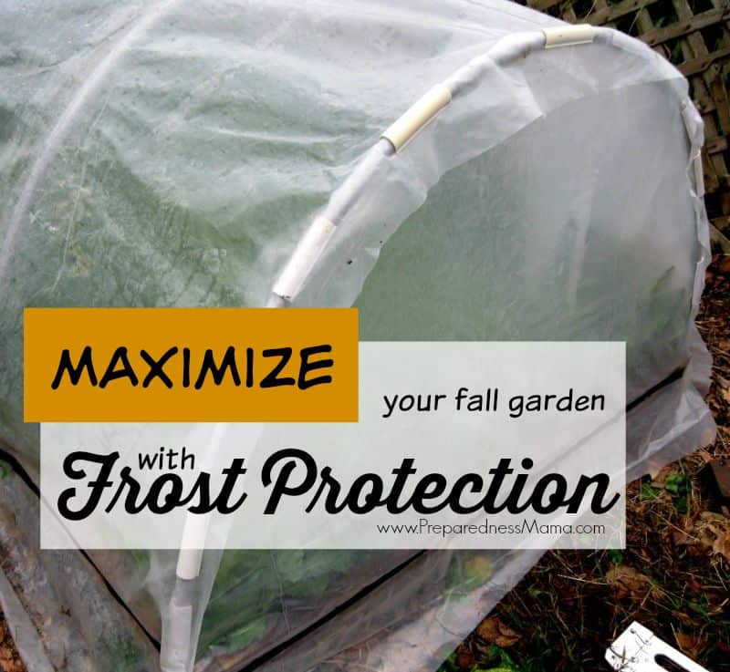 Learn how to use row covers, cloches, cold frames and hoop houses for frost protection in your fall garden. Maximize the harvest with these frugal ideas | PreparednessMama
