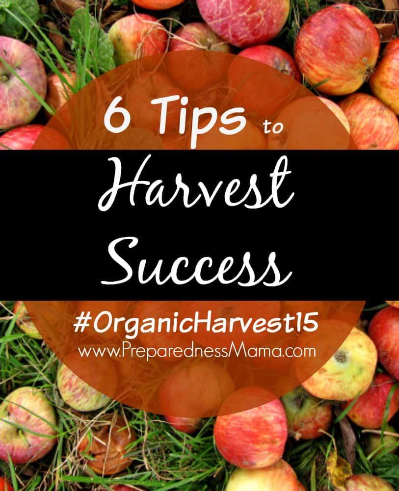 6 Tips for harvest success #OrganicHarvest15 | PreparednessMama