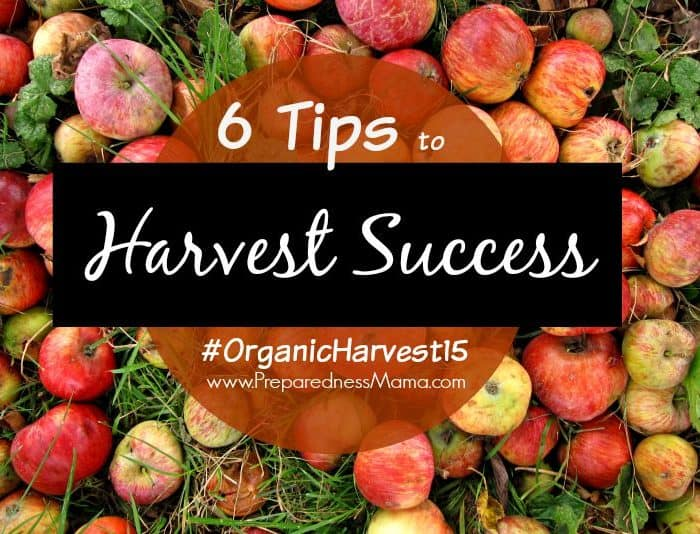 6 Tips for Harvest Success