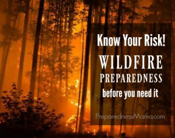 Know the Risk: Wildfire Preparedness Before You Need It