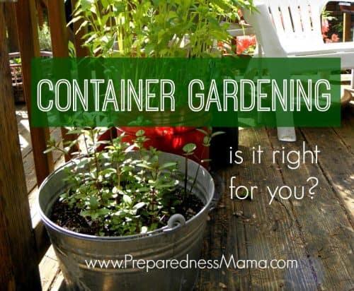 Container Gardening Tips | PreparednessMama