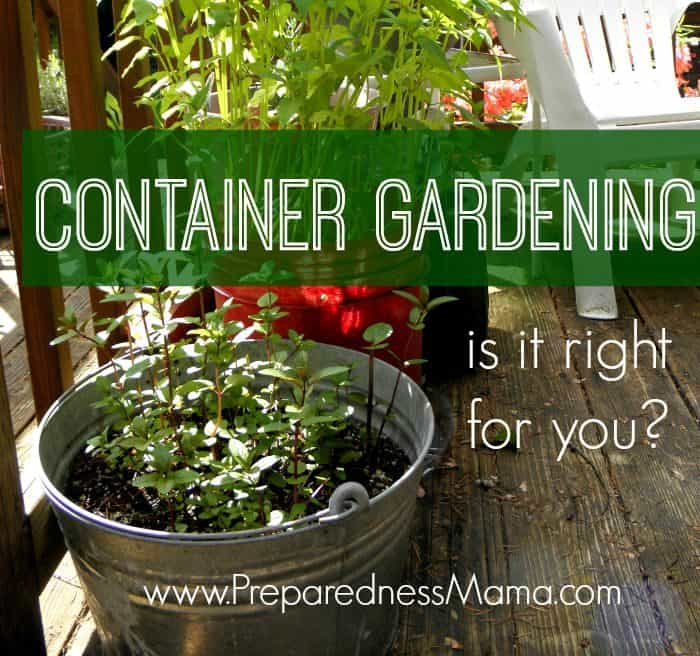 Is Container Gardening Right for You?