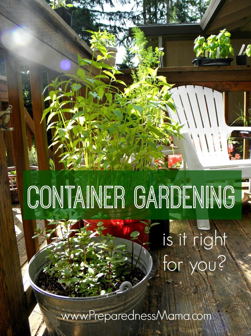 Is container gardening right for you preparednessmama for Gardening tips