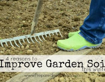 4 reasons to improve garden soil this winter | PreparednessMama