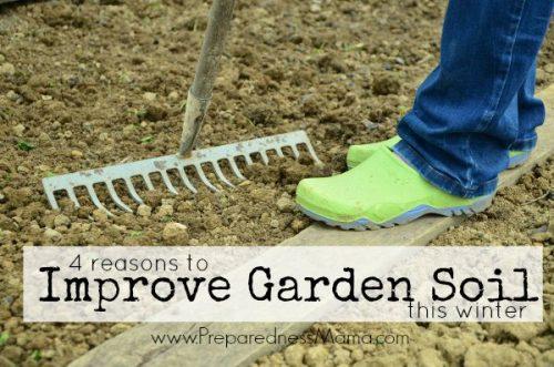 4 reasons to improve garden soil this winter | PreparednessMama