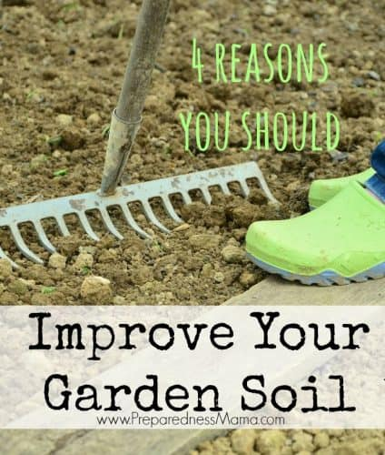 4 Reasons to improve your garden soil this winter | PreparednessMama