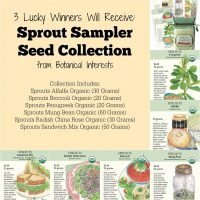 Have greens in the kitchen all winter long. Learn about sprouting seeds   PreparednessMama
