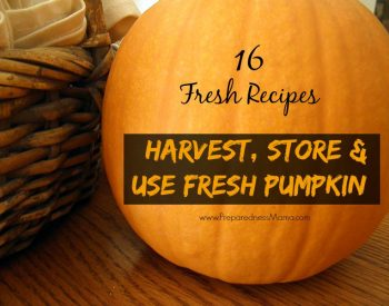 Take advantage of the pumpkin harvest and learn how to harvest, process and use fresh pumpkin. 16 fresh recipes #OrganicHarvest15 | PreparednessMama