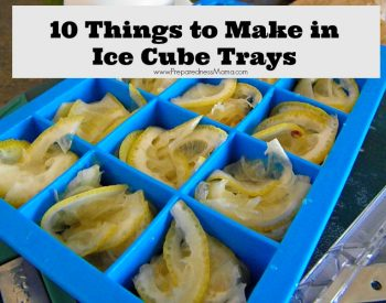 Do you still have this underused tool in your kitchen? 10 Ice Cube Tray Recipes | PrpparednessMama
