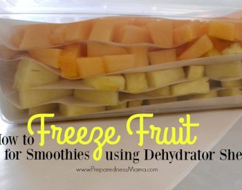 How to freeze fruit for smoothies using dehydrator sheets | PreparednessMama