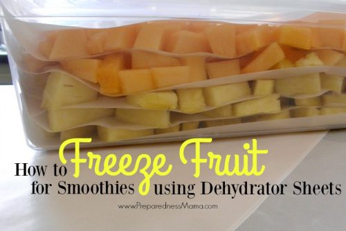 How to freeze fruit for smoothies using dehydrator sheets   PreparednessMama