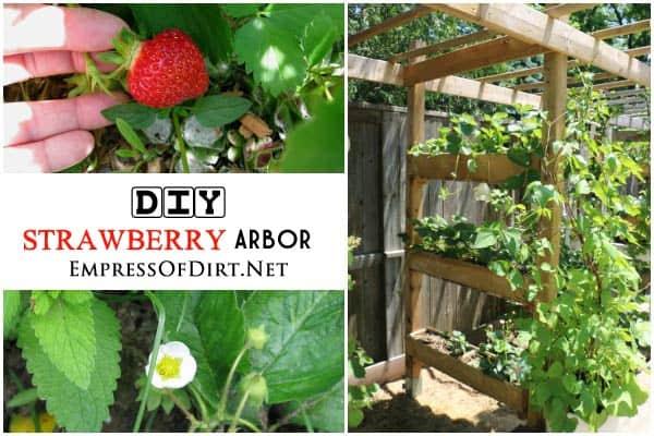 Vertical Gardening Roundup: DIY Strawberry Arbor from Empresss of Dirt | PreparednessMama