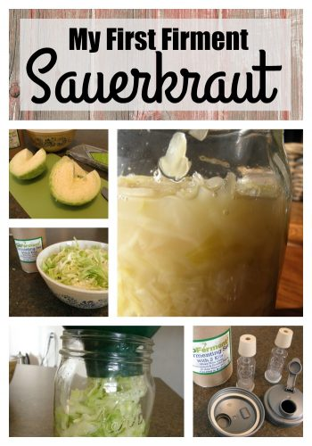 Making sauerkraut for my first ferment | PreparednessMama
