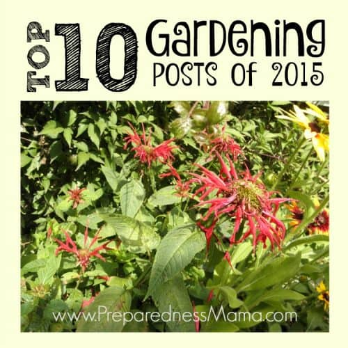 The top 10 gardening posts of 2015 , chosen by readers | PreparednessMama