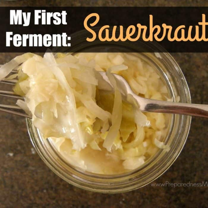 My First Ferment: Sauerkraut