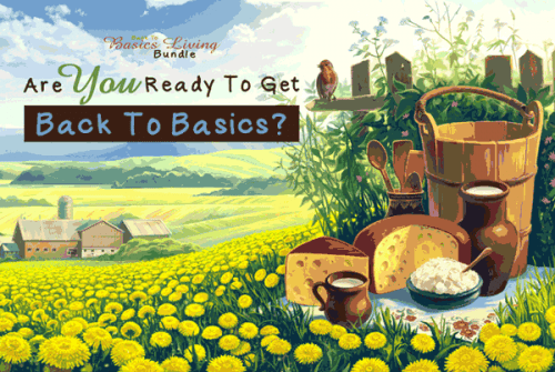 Are you ready to get Back to Basics? | PreparednessMama