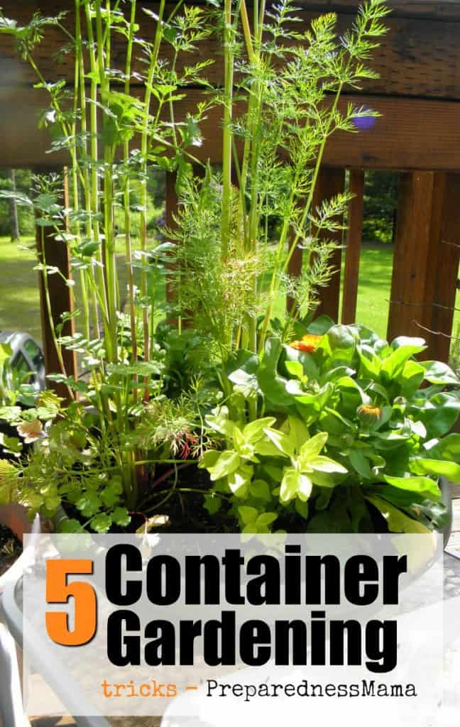 gardening tower stacked how vegetables garden coronado it build shawna container to pyramid