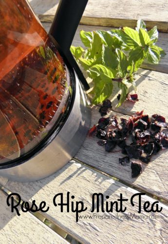 Rose hip mint tea is refreshing and good for you | PreparednessMama