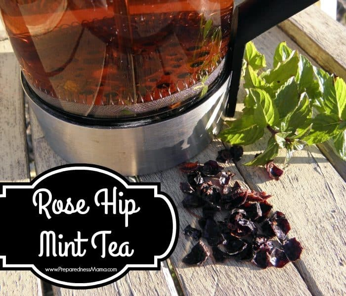 Rose Hip Mint Tea